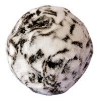 Truffe blanche Enrobage noir